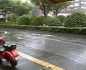 雨曜日。。