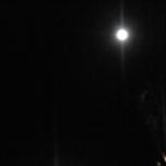 昨日のお月様